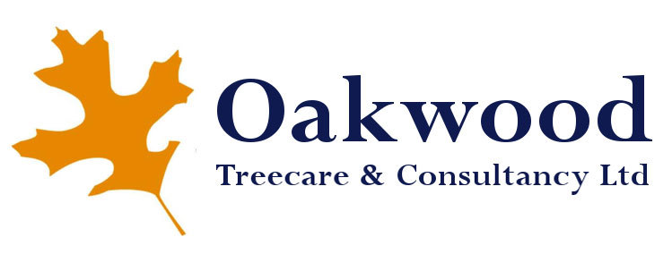 Oakwood Treecare
